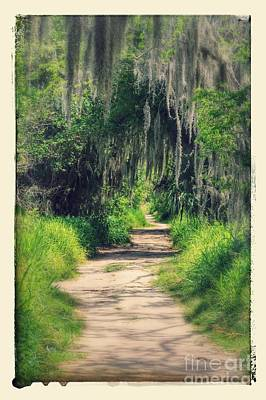 Mysterious Florida Path Poster by Carol Groenen