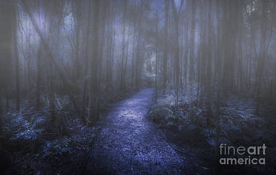 Mystery Pathway Poster by Jorgo Photography - Wall Art Gallery
