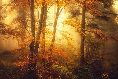 Mystic Fog Poster