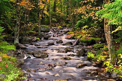 Mystical Mountain Stream Poster
