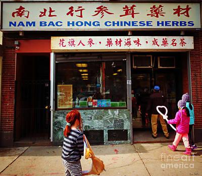 Nam Bac Hong Chinese Herbs, Chinatown, Boston, Massachusetts Poster