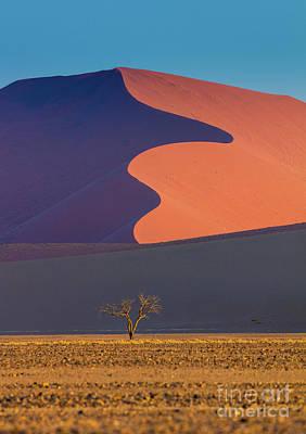 Namib Dune Poster by Inge Johnsson