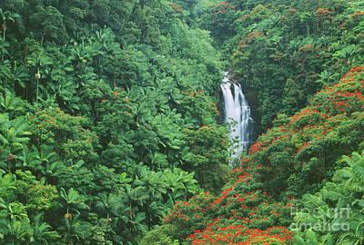 Nanue Falls Poster