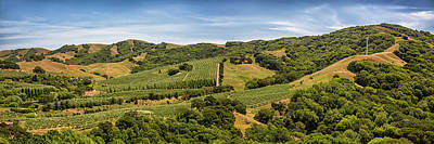 Poster featuring the photograph Napa Valley California Panoramic by Adam Romanowicz