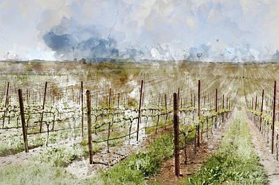 Napa Valley California Vineyard Poster by Brandon Bourdages