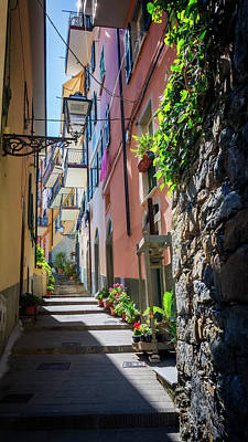 Narrow Street In Cinque Terre Italy Poster by Joan Carroll