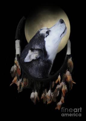 Native American Dream Catcher Wolf Husky Dog  Poster