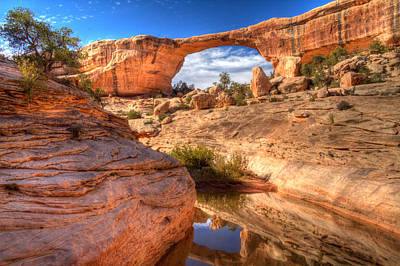 Natural Bridges National Monument Poster