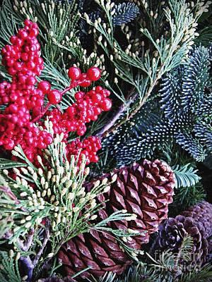 Natural Christmas 3 Poster by Sarah Loft