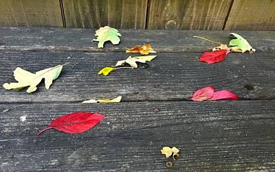 Natural Fall Poster