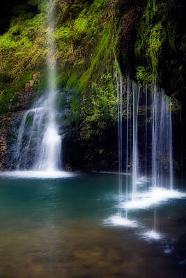 Natural Falls Poster by Lana Trussell