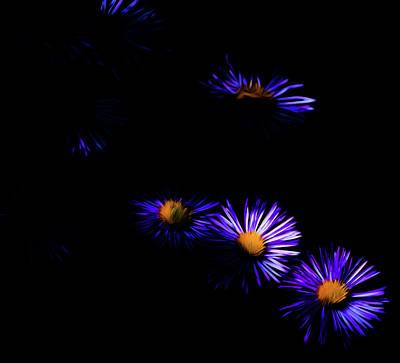 Natural Fireworks Poster