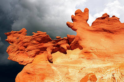 Poster featuring the photograph Nature's Artistry Nevada 2 by Bob Christopher