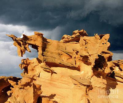 Poster featuring the photograph Nature's Artistry Nevada 3 by Bob Christopher