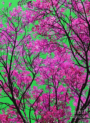Natures Magic - Pink And Green Poster by Rebecca Harman