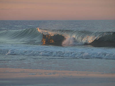 Natures Wave Poster