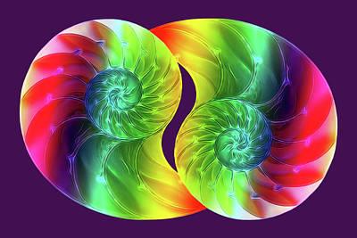 Nautilus Rainbow Poster by Gill Billington