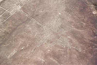 Nazca Lines Hummingbird Poster by Jess Kraft