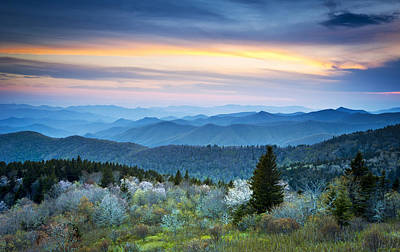 Nc Blue Ridge Parkway Landscape In Spring - Blue Hour Blossoms Poster by Dave Allen