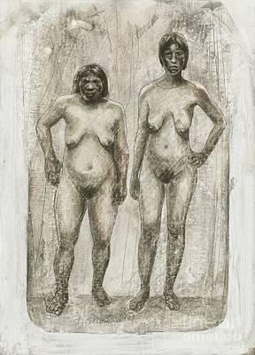 Neanderthal And Homo Sapiens Poster by Kennis & Kennis/MSF