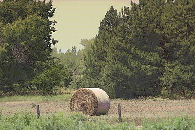 Nebraska Farm Life - Hay Bail Poster