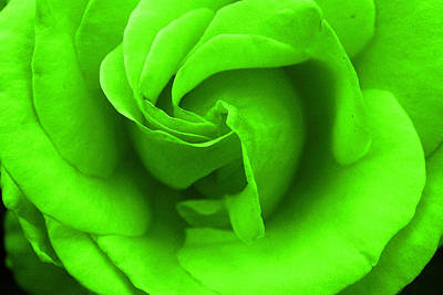 Neon Green Rose Poster
