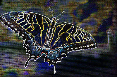 Neon Swallowtail Butterfly Poster