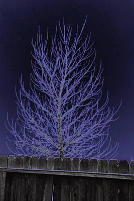 Neon Tree Poster