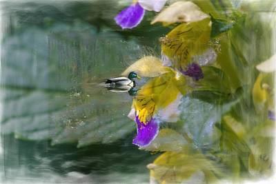 Nettle Duck Poster by Leif Sohlman