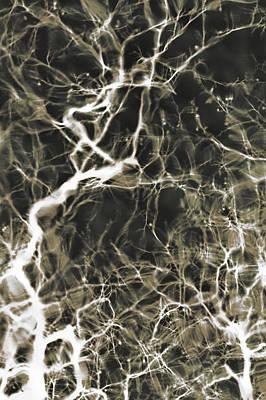 Neurons Firing Poster by Christopher Kulfan