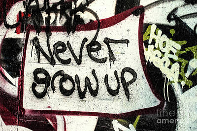 Poster featuring the photograph Never Grow Up by Terry Rowe