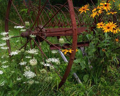 New England Summer Wild Flowers Poster