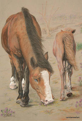 New Forest Mare And Foal Poster by Jan Lowe