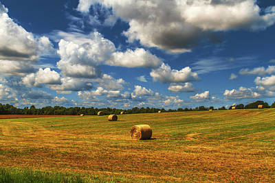 Poster featuring the photograph New Mowed Hay  by Barry Jones