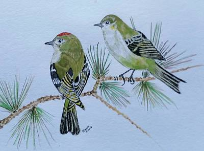 Ruby Crowned Kinglet Pair #2 Poster