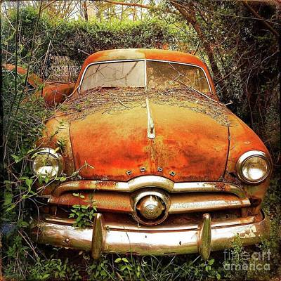 Ford At Rest Poster by Terry Rowe