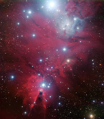Ngc 2264 And The Christmas Tree Star Cluster Poster by Eso