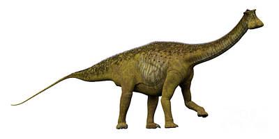 Nigersaurus Side Profile Poster
