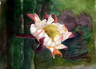 Night Blooming Cereus Poster by Sharon Mick