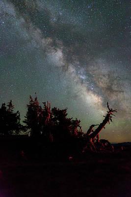 Night Pines At Crater Lake Poster