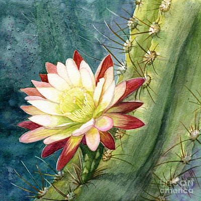 Nightblooming Cereus Cactus Poster by Marilyn Smith