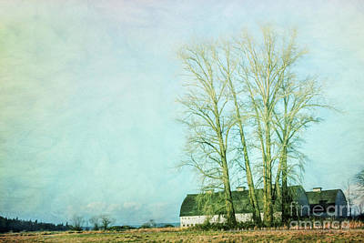 Poster featuring the photograph Nisqually Barns by Jean OKeeffe Macro Abundance Art
