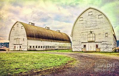 Nisqually Twin Barns Poster by Jean OKeeffe Macro Abundance Art