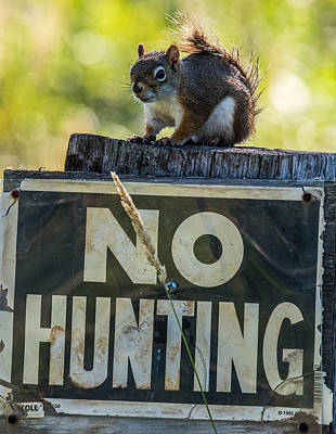 No Hunting Poster by Paul Freidlund