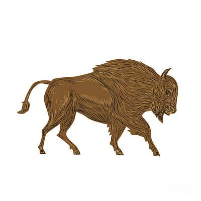 North American Bison Buffalo Charging Retro Poster