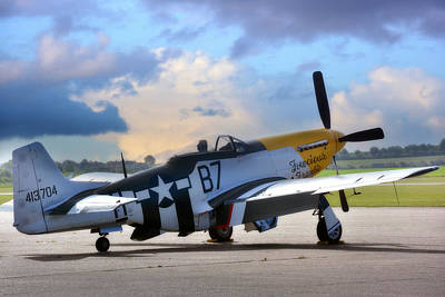 North American P-51 Mustang Poster