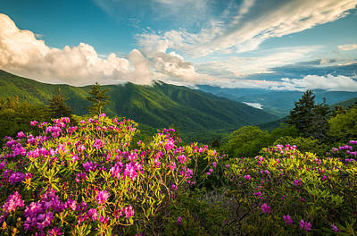 North Carolina Blue Ridge Parkway Spring Mountains Scenic Landscape Poster by Dave Allen