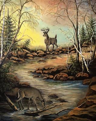 North Shore Hidden Creek Poster by Kimberly Benedict