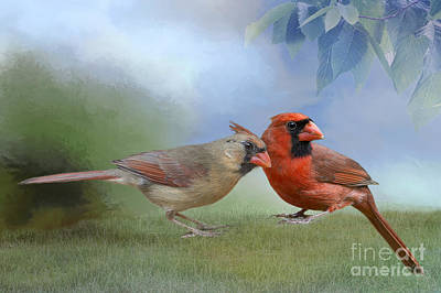 Northern Cardinals On A Spring Day Poster by Bonnie Barry