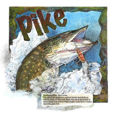 Poster featuring the painting Northerrn Pike by John Dyess
